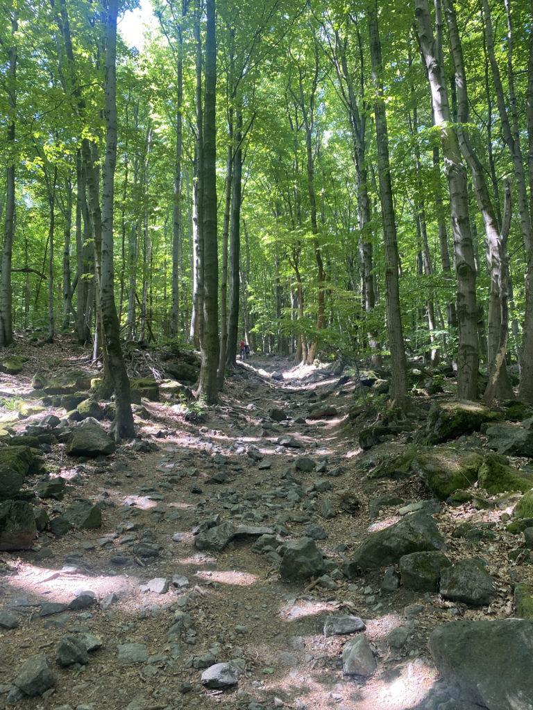 Ślęża Mountain Hike