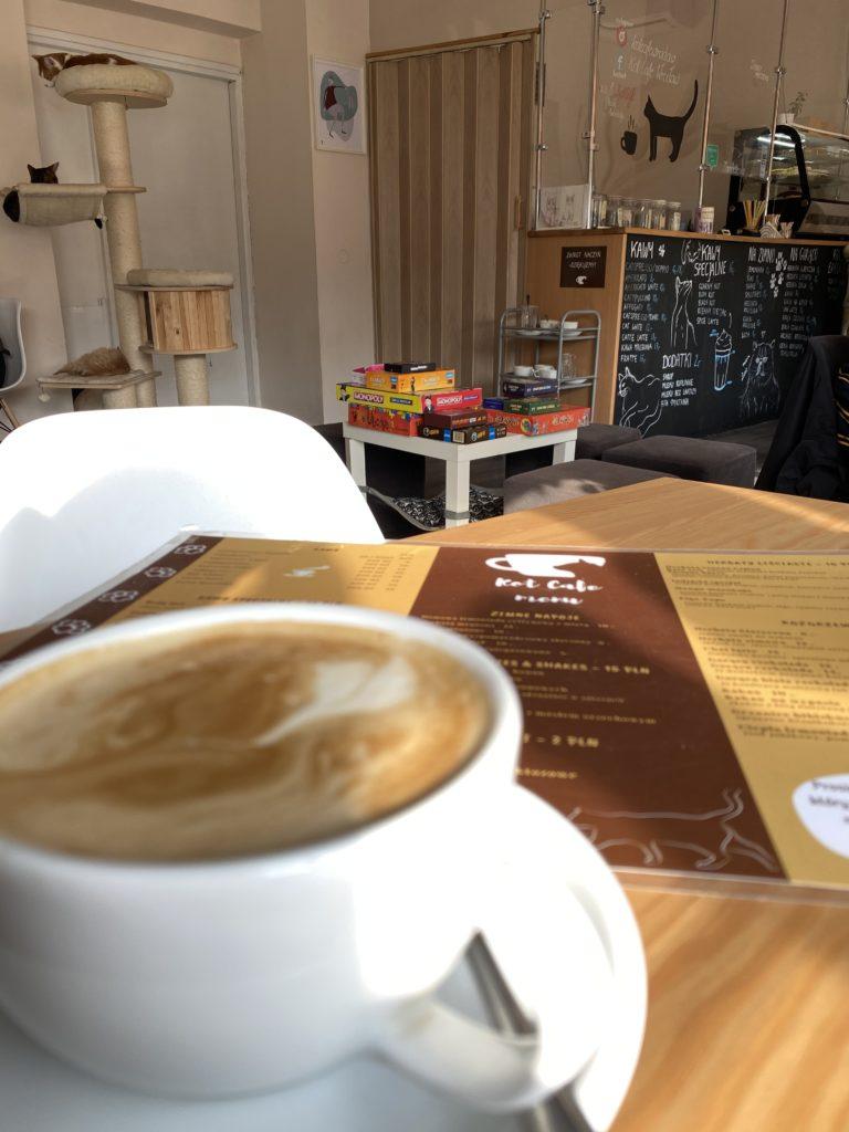 Cat Coffee Wroclaw