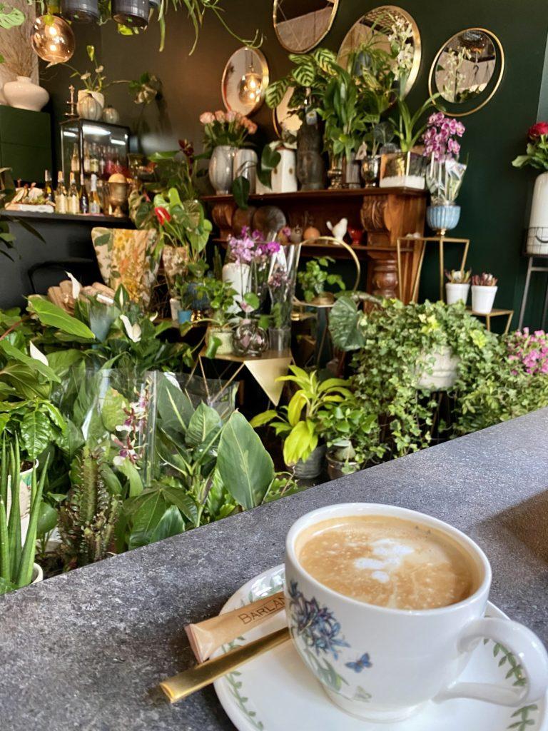 Kwiaty Kawy